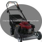 6 loại máy cắt cỏ chất lượng được sử dụng phổ biến hiện nay