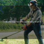 Tư vấn chọn mua máy cắt cỏ cũ chất lượng tốt giá rẻ